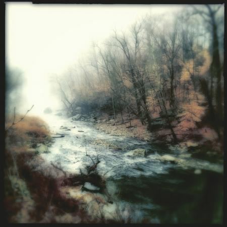 Up The Creek by Elena Bouvier