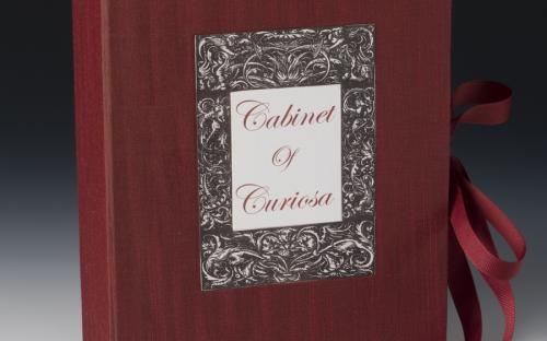 Claire Owen :: Cabinet of Curiosa