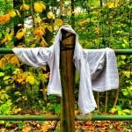Hanging Around : Germantown by Elena Bouvier