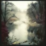 Looking Ahead by Elena Bouvier