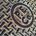 PECo by Elena Bouvier