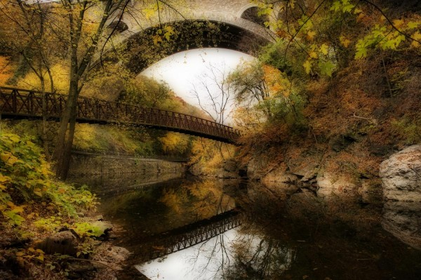 Bridging the Gap by Elena Bouvier
